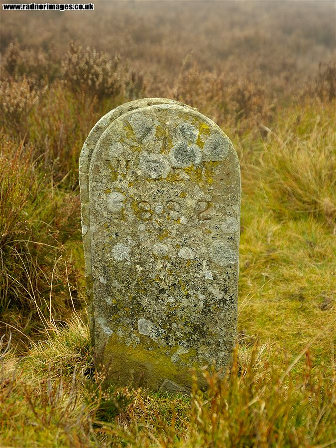 Estate Boundary Stone on Common