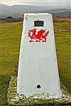 Brechfa Common Trig point